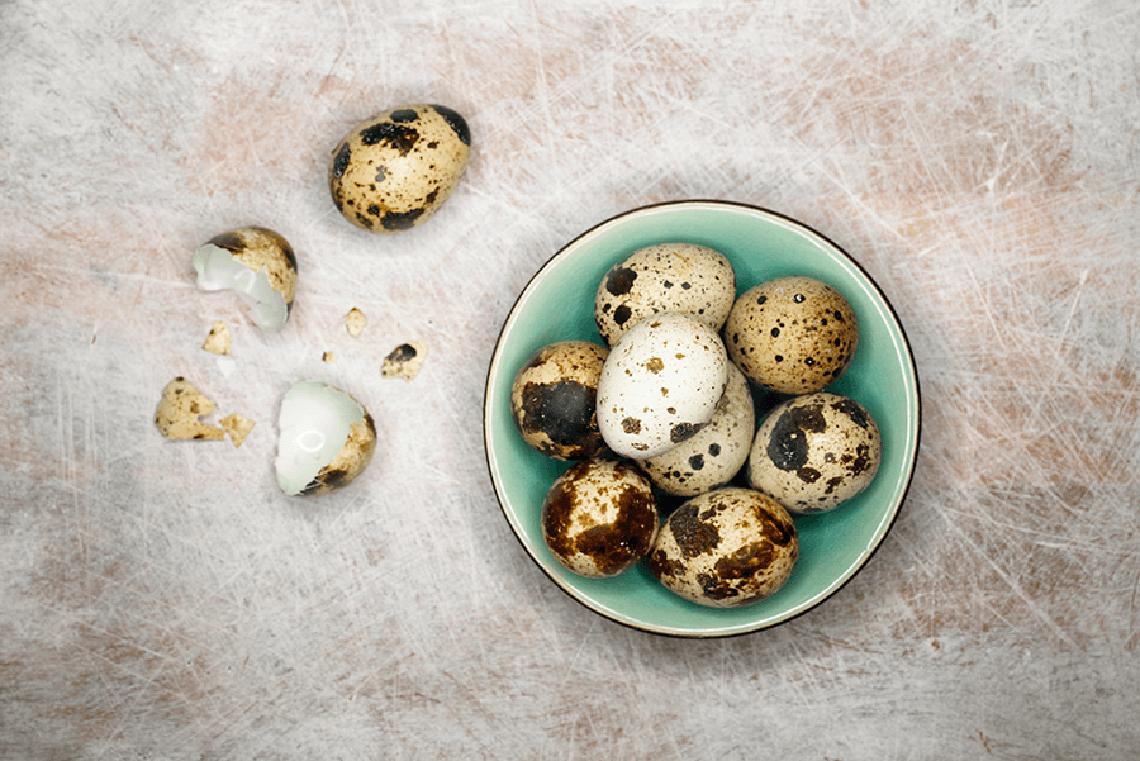 quils-eggs-blue